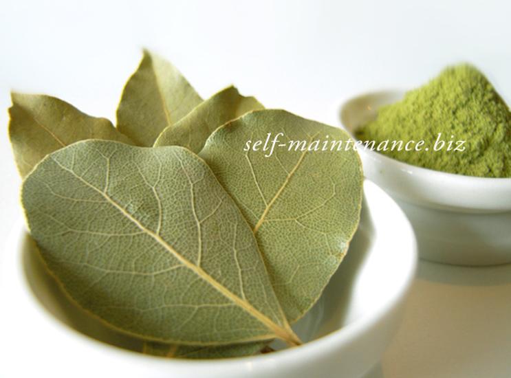 ベイリーブス(月桂樹/ローリエ)の使い方・効能・美容効果・食材との相性