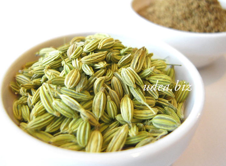 spice_fennel