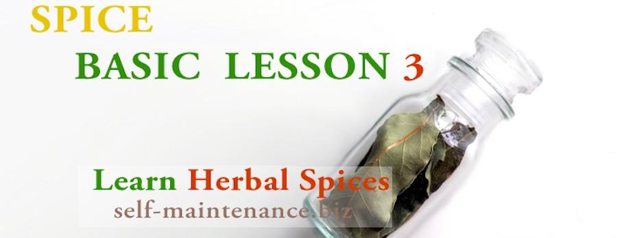 スパイスベーシック LESSON 3